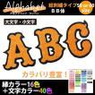総刺繍アルファベット(BB体 60mm)オーダー1文字ワッペン/42色/アイロン接着 オリジナル・ユニフォームのネーム(名入れ)に