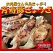 お肉屋さんの具がたっぷり『芳寿豚ぎょうざ 20個入り』 焼き餃子、水餃子、揚げ餃子などにも ギフトにも