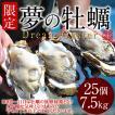 生牡蠣 殻付き 特大 夢牡蠣 25個 生食用 生ガキ 大粒生牡蠣 特大 バーベキュー[御歳暮 ギフト]