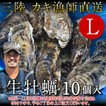 生牡蠣 殻付き L 10個 生食用 生ガキ 宮城県産 漁師直送 格安 生かき お取り寄せ バーベキュー[御歳暮 ギフト]