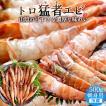 モサエビ 500g(約20尾) 鳥取県産 幻のえび 日本海 旨味が強い 甘エビ以上の甘味 通販直送 【送料無料】