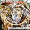 マルえもん[Lサイズ]20個セット 北海道厚岸産 牡蠣 殻付き 牡蠣 生食 お中元 御中元 お取り寄せグルメ プレゼント ギフト