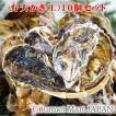弁天かき[L(A3)サイズ]10個セット 北海道厚岸産 牡蠣 殻付き 牡蠣 生食 お中元 御中元 お取り寄せグルメ プレゼント ギフト