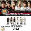 2PM ×HOTTEST 6th ファンミーティング クッション 公式グッズ 2PM ファンミグッズ