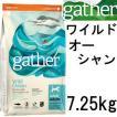 Gather ギャザー ワイルドオーシャン 7.25kg+Fish4オーシャンホワイト75g