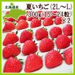 夏いちご(300g・15-24粒)×2