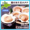 殻つきホタテ貝(片貝・8枚入)×2個 北海道噴火湾産 殻長11〜12cm 冷凍配送