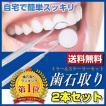 歯石取り 自分で取る 除去 器具 歯垢 とり 2本セット ...