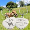迷子札 愛犬にお勧め かわいいハートプレート 名入れ シルエット刻印  ネーム タグ ステンレスハートM