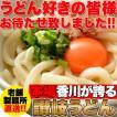 讃岐うどん6食分 600g(300g×2袋)