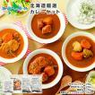 スープカレー レトルトカレー 4食セット 北海道 お取...