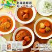 スープカレー レトルト 業務用 北海道 ご当地カレー 10食セット グルメ お取り寄せ ギフト