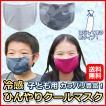 夏マスク ひんやりクールマスク 子ども用 水で濡らして使う冷感布マスク 夏用 熱中症対策 アウトドア用 飛沫予防 ウイルス対策 新・街のエチケット