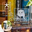 ペット 位牌 KP-25A-2D(大) 写真 レーザー スワロフスキー 仏具 ペットメモリアル 手元供養 49日 虹の橋 クリスタル ガラス かわいい キューブ 犬 猫 ハムスター