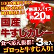 牛すじカレー3パック入 ポイント消化 100%国産牛す...