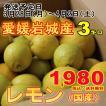 訳あり レモン 産地 瀬戸内しまなみ海道 愛媛県 岩城島 約3kg 送料無料 レモン