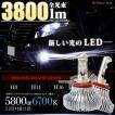 LEDフォグランプ H8 H11 H16
