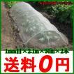 防虫ネット シート 1mm目 2.1m×50m 2本セット[虫よけ 網 ガーデニング 野菜 園芸 農業 資材 用品]