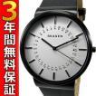 即納可 スカーゲン 腕時計 SKW6243