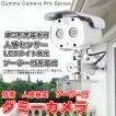 ダミーカメラ 屋外用 防犯カメラ ダミー  ソーラー LED点滅 人感センサー 防雨 屋外 屋内 送料無料