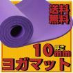 ヨガマット トレーニングマット エクササイズマット 10mm ダイエット 体幹トレーニング 腹筋 お腹 痩せ 引き締めに 送料無料