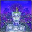 【輸入盤】ERYKAH BADU エリカ・バドゥ/NEW AMERYKAH PART TWO : RETURN OF THE ANKH(CD)