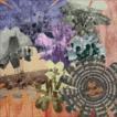 ウッドストック50周年記念スペシャル・ボックス(完全生産限定盤) [CD]
