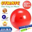 ギムニク バランスボール 55cm レッド+ダブルアクションポンプ セット