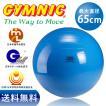 ギムニク バランスボール 65cm ブルー(青色)