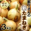 たまねぎ 藪下さんの特別栽培たまねぎ3kg 和歌山産 サイズ無選別 送料無料 訳ありグルメ yf