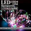 LEDイルミネーション ジュエリーライト 12V 10m 100球 ICチップ付き レインボー ワイヤー クリスマスライト