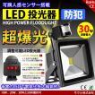 LED投光器 30W 300W相当 センサーライト 人感 3M配線付 屋外 昼光色 防犯ライト 駐車場 倉庫 防水加工 広角 防水 SUCCUL