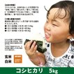 令和2年度産 コシヒカリ 精米 白米 5kg 兵庫県上郡町産 送料無料