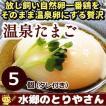 卵 温泉たまご 5個入り 温泉卵 温泉玉子 / 冷蔵 限定配送