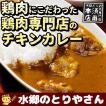チキンカレー 水郷鶏 チキンカレー 2食入り 欧風カレー レトルト