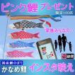 鯉幟 かなめピンク鯉 0.9 サービス
