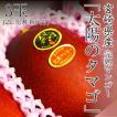 父の日 プレゼント ギフト 宮崎県産 太陽のタマゴ 完熟マンゴー 2L 3玉入り 化粧箱入り 送料無料