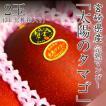 父の日 プレゼント ギフト 宮崎県産 太陽のタマゴ 完熟マンゴー 3L 2玉入り 化粧箱入り 送料無料