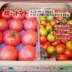 親バカトマトとミニトマトの詰め合わせ 約4kg いわき市産 選べるミニ