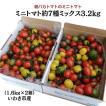 親バカトマトのミニトマト約7種ミックス 3.6kg いわき市産