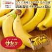 たっぷり14kg!おいしい高地栽培バナナ