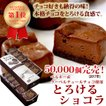 チョコレート チョコレート菓子 スイーツ ギフト お取り寄せ チョコレート菓子 とろけるショコラ ベルギー産チョコ 15個