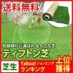 芝生 天然芝 ティフトン芝 ロール巻芝 (芝生 通販)