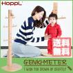 HOPPL(ホップル) GENKI-METER ゲンキメーター 身長計 ポールハンガー 木製 GE-METER-NA