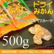 業務用 ドライみかん(小袋) 500g