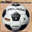 サッカー ボール 5号球 ペレーダ 5000 土用 モルテン F5P5001 中学 高校 一般