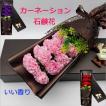 カーネーション ソープフラワー いい香り 母の日ギフト カーネーション花ボックス 永遠の  花 お祝い お見舞い sfw1802