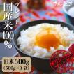お試しセット お米 生活応援米 ブレンド米 送料無料 白米 750g ポイント消化
