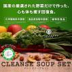 クレンズスープ 4個セット ヴィーガン ベジタリアン ヨガ ファスティング 送料無料 ダイエット クレンズジュース代用