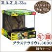 爬虫類 両生類用ケージ グラステラリウム 3030